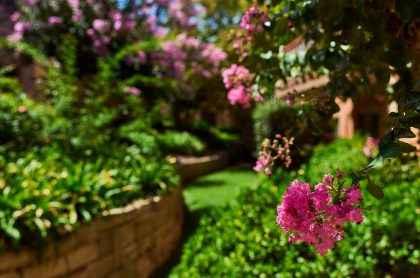 Retirement living at Courtlands Village in North Parramatta