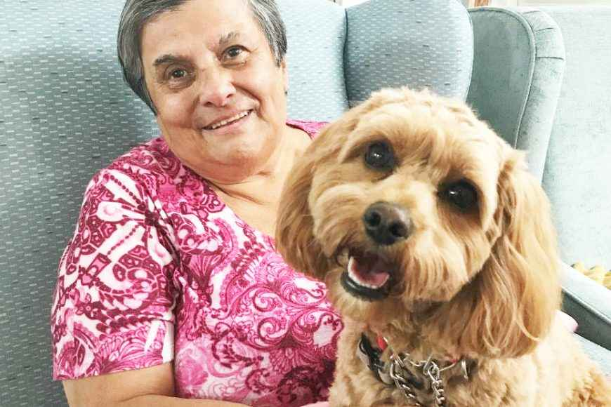 Pet Therapy at Casa Mia Aged Care in Padstow.