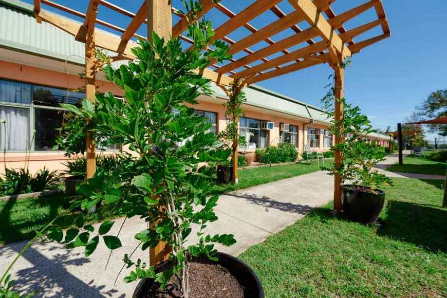 Casa Mia Aged Care in Padstow features a beautiful garden.